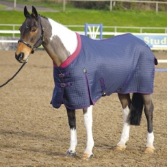 Shires Westbourne Multi Purpose Rug (RRP �64.99) - 6'9 Left!