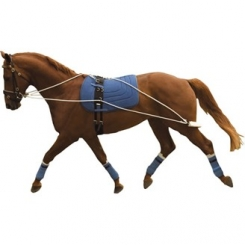 Discount Saddlery Ridingwear Clothing Footwear And