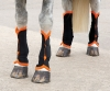 Shires Fly Turnout Socks