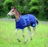 Shires Highlander Foal Rug