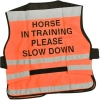 Equisafety Safety Tabard - Horse In Training