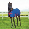 Weatherbeeta Original 1200d Foal Turnout Rug