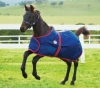 Weatherbeeta 1200d Adustable Foal Rug (RRP £32.99)