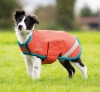 Shires 'Digby & Fox' Waterproof Dog Coat
