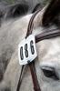 Shires Bridle Number Kit
