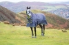 Shires Highlander Original 200 Turnout Combo (RRP £91.99)