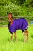 Horseware Ireland Amigo Foal Turnout Rug (Adjustable) RRP £44.99