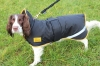 Shires Stormbreaker Dog Coat (RECUCED TO CLEAR)