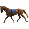 Weatherbeeta Kincade Lunging / Training System