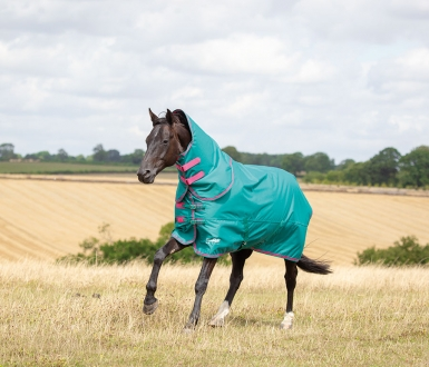 Shires Tempest Original 100g Rug & Neck Set (RRP £75.99)