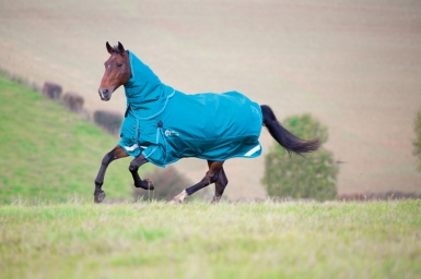 Shires StormCheeta 200 Turnout Rug & Neck Set (RRP £149.99)