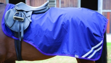 Shires Waterproof Exercise Sheet (RRP £31.99)